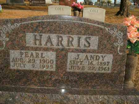 HARRIS, J. ANDY - Boone County, Arkansas | J. ANDY HARRIS - Arkansas Gravestone Photos