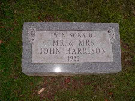HARRISON, TWIN SONS - Boone County, Arkansas | TWIN SONS HARRISON - Arkansas Gravestone Photos