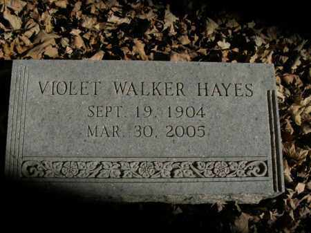 WALKER HAYES, VIOLET - Boone County, Arkansas | VIOLET WALKER HAYES - Arkansas Gravestone Photos