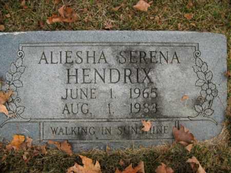 HENDRIX, ALIESHA SERENA - Boone County, Arkansas | ALIESHA SERENA HENDRIX - Arkansas Gravestone Photos