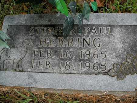 HERRING, STEPHEN PAUL - Boone County, Arkansas | STEPHEN PAUL HERRING - Arkansas Gravestone Photos