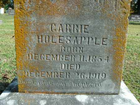 HOLESAPPLE, CARRIE - Boone County, Arkansas | CARRIE HOLESAPPLE - Arkansas Gravestone Photos