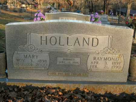 HOLLAND, MARY - Boone County, Arkansas | MARY HOLLAND - Arkansas Gravestone Photos