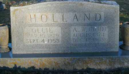 "HOLLAND, AMBROSE WALTER ""BUD"" - Boone County, Arkansas 
