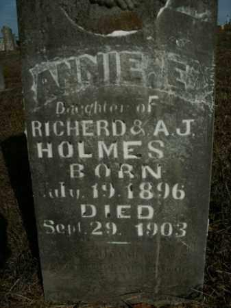 HOLMES, ANNIE E. - Boone County, Arkansas | ANNIE E. HOLMES - Arkansas Gravestone Photos