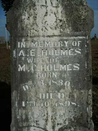HOLMES, ARTEMISSA E. - Boone County, Arkansas | ARTEMISSA E. HOLMES - Arkansas Gravestone Photos