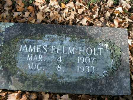 HOLT, JAMES PELM - Boone County, Arkansas | JAMES PELM HOLT - Arkansas Gravestone Photos