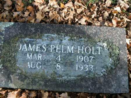 HOLT, JAMES PELM - Boone County, Arkansas | JAMES PELM HOLT - Arkansas Gravestone Photos