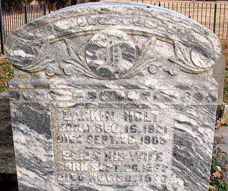 HOLT, JOHN LARKIN - Boone County, Arkansas | JOHN LARKIN HOLT - Arkansas Gravestone Photos