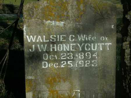 HONEYCUTT, WALSIE C. - Boone County, Arkansas | WALSIE C. HONEYCUTT - Arkansas Gravestone Photos