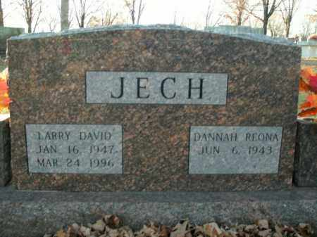 JECH, LARRY DAVID - Boone County, Arkansas | LARRY DAVID JECH - Arkansas Gravestone Photos