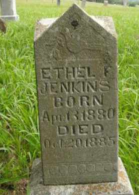 JENKINS, ETHEL F. - Boone County, Arkansas | ETHEL F. JENKINS - Arkansas Gravestone Photos