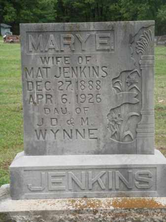 JENKINS, MARY E. - Boone County, Arkansas | MARY E. JENKINS - Arkansas Gravestone Photos