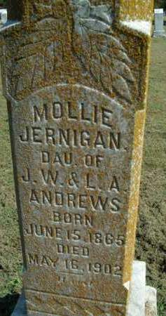 ANDREWS JERNIGAN, MOLLIE - Boone County, Arkansas | MOLLIE ANDREWS JERNIGAN - Arkansas Gravestone Photos