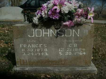 JOHNSON, FRANCES - Boone County, Arkansas | FRANCES JOHNSON - Arkansas Gravestone Photos