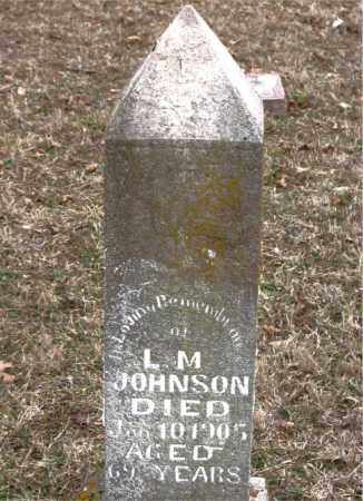 JOHNSON, LUTHER MARTIN - Boone County, Arkansas | LUTHER MARTIN JOHNSON - Arkansas Gravestone Photos