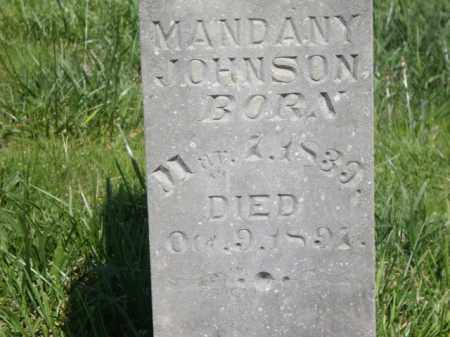 JOHNSON, MANDANY - Boone County, Arkansas | MANDANY JOHNSON - Arkansas Gravestone Photos