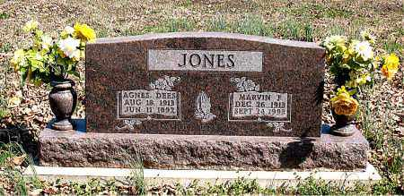 DEES JONES, AGNES - Boone County, Arkansas | AGNES DEES JONES - Arkansas Gravestone Photos