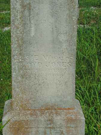 JONES, ELSIE - Boone County, Arkansas | ELSIE JONES - Arkansas Gravestone Photos
