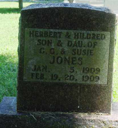 JONES, HERBERT - Boone County, Arkansas | HERBERT JONES - Arkansas Gravestone Photos