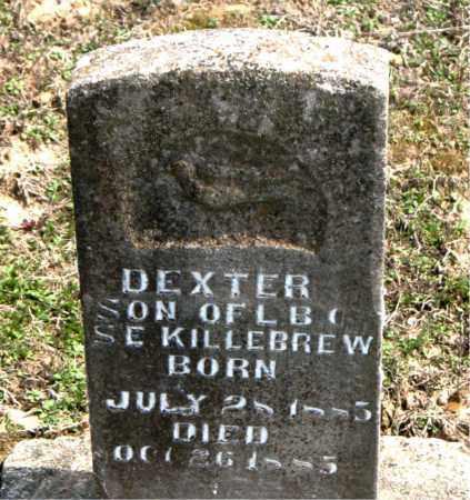 KILLEBREW, DEXTER - Boone County, Arkansas | DEXTER KILLEBREW - Arkansas Gravestone Photos