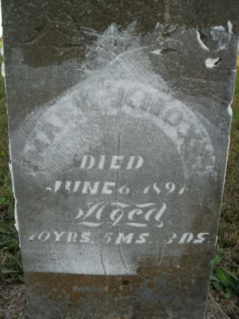 KNOX, MARY - Boone County, Arkansas   MARY KNOX - Arkansas Gravestone Photos