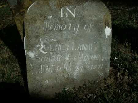 LAMB, JULIA  B. - Boone County, Arkansas | JULIA  B. LAMB - Arkansas Gravestone Photos