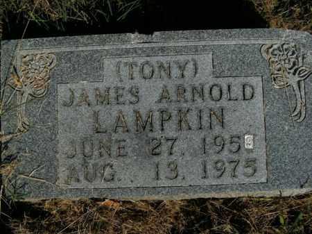 LAMPKIN, JAMES ARNOLD - Boone County, Arkansas | JAMES ARNOLD LAMPKIN - Arkansas Gravestone Photos