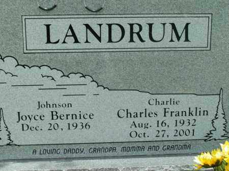 LANDRUM, CHARLES FRANKLIN - Boone County, Arkansas | CHARLES FRANKLIN LANDRUM - Arkansas Gravestone Photos