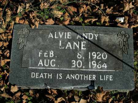 LANE, ALVIE ANDY - Boone County, Arkansas | ALVIE ANDY LANE - Arkansas Gravestone Photos