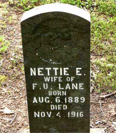 LANE, NETTIE E. - Boone County, Arkansas | NETTIE E. LANE - Arkansas Gravestone Photos