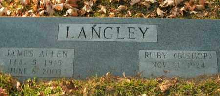 LANGLEY, JAMES ALLEN - Boone County, Arkansas | JAMES ALLEN LANGLEY - Arkansas Gravestone Photos