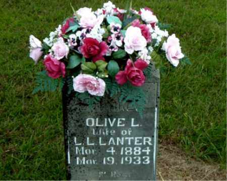 LANTER, OLIVE  L. - Boone County, Arkansas | OLIVE  L. LANTER - Arkansas Gravestone Photos