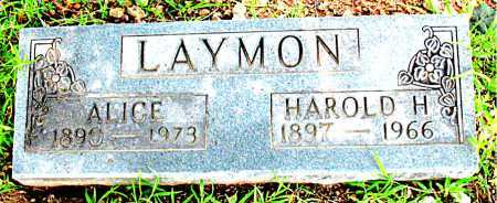 LAYMON, ALICE - Boone County, Arkansas | ALICE LAYMON - Arkansas Gravestone Photos