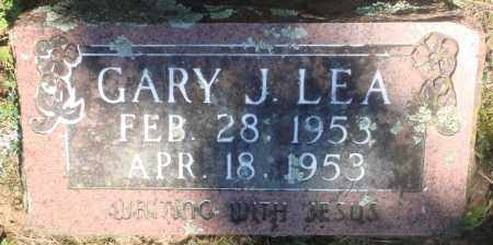 LEA, GARY J - Boone County, Arkansas | GARY J LEA - Arkansas Gravestone Photos
