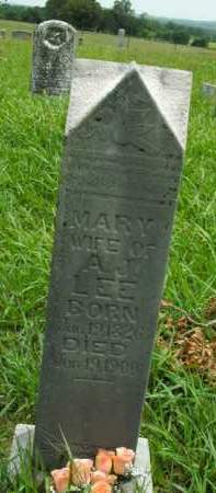 LEE, MARY - Boone County, Arkansas | MARY LEE - Arkansas Gravestone Photos
