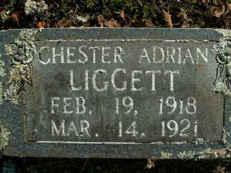 LIGGETT, CHESTER ADRIAN - Boone County, Arkansas | CHESTER ADRIAN LIGGETT - Arkansas Gravestone Photos