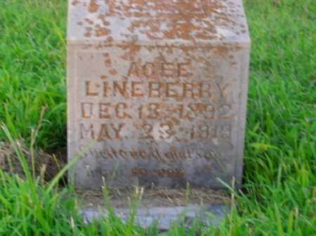 LINEBERRY, AGEE - Boone County, Arkansas | AGEE LINEBERRY - Arkansas Gravestone Photos
