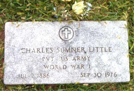 LITTLE  (VETERAN WWI), CHARLES SUMNER - Boone County, Arkansas | CHARLES SUMNER LITTLE  (VETERAN WWI) - Arkansas Gravestone Photos