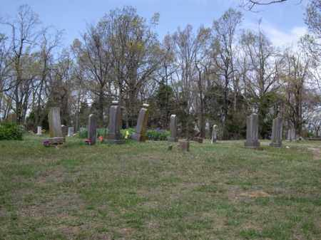 *LOBACK OVERVIEW, . - Boone County, Arkansas | . *LOBACK OVERVIEW - Arkansas Gravestone Photos