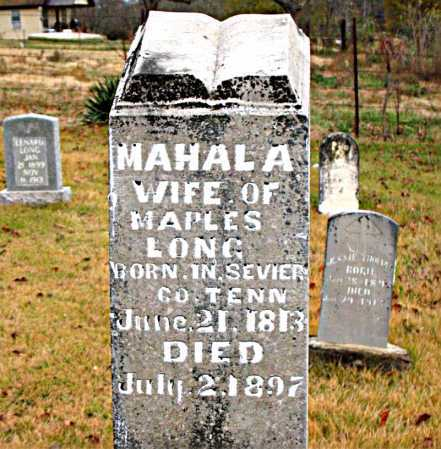 LONG, MAHALA - Boone County, Arkansas | MAHALA LONG - Arkansas Gravestone Photos