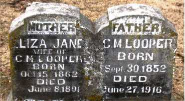 LOOPER, LIZA JANE - Boone County, Arkansas | LIZA JANE LOOPER - Arkansas Gravestone Photos