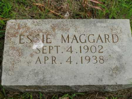 MAGGARD, ESSIE - Boone County, Arkansas | ESSIE MAGGARD - Arkansas Gravestone Photos