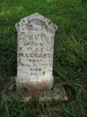 MAGGARD, EFFIE - Boone County, Arkansas | EFFIE MAGGARD - Arkansas Gravestone Photos