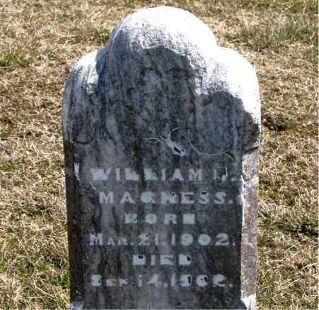 MAGNESS, WILLIAM - Boone County, Arkansas | WILLIAM MAGNESS - Arkansas Gravestone Photos