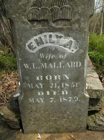 MALLARD, EMILY A. - Boone County, Arkansas | EMILY A. MALLARD - Arkansas Gravestone Photos