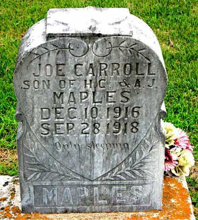 MAPLES, JOE CARROLL - Boone County, Arkansas | JOE CARROLL MAPLES - Arkansas Gravestone Photos