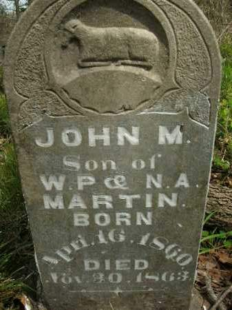 MARTIN, JOHN M. - Boone County, Arkansas | JOHN M. MARTIN - Arkansas Gravestone Photos