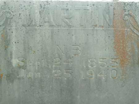 MARTIN, NAPOLEON B. - Boone County, Arkansas | NAPOLEON B. MARTIN - Arkansas Gravestone Photos