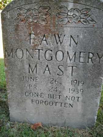MAST, FAWN - Boone County, Arkansas | FAWN MAST - Arkansas Gravestone Photos